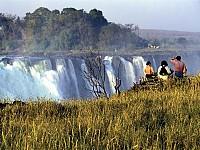 zimbabwe export youth