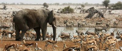 tourism destinations, namibia