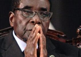 zimbabwe Goats Mugabe