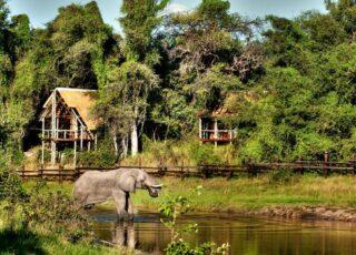 botswana Destination